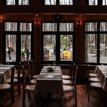 Ресторан в лесу. Сафари