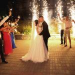 Свадьба в Орле. Парк-отель Мечта. Серей и Валерия