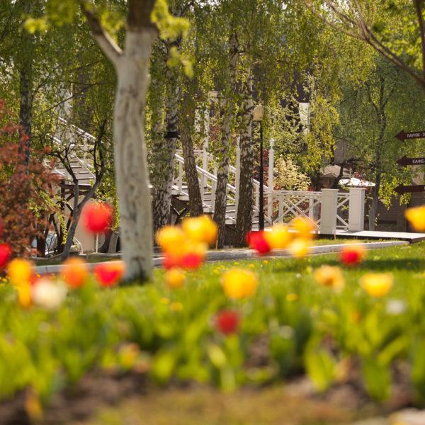 Парк-отель мечта в цветах