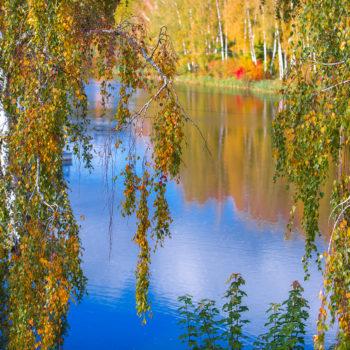Озеро Мечты золотой осенью